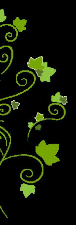 Lierre Droit Inspiration-Alsace